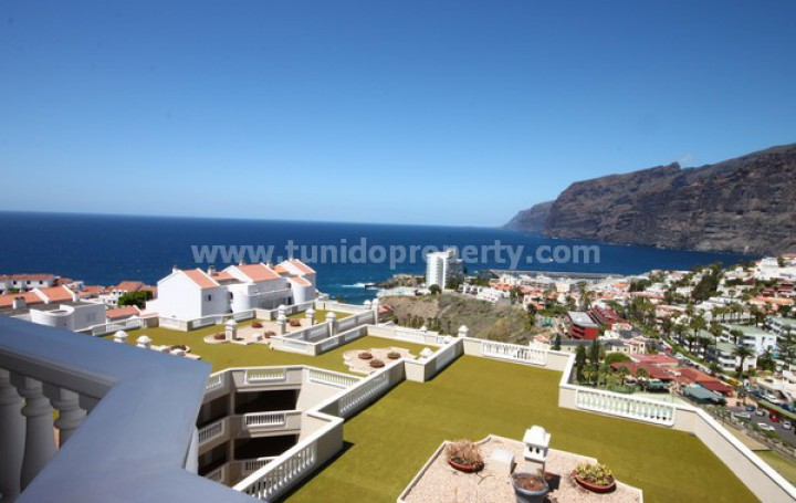 Real estate in Tenerife for sale » #938