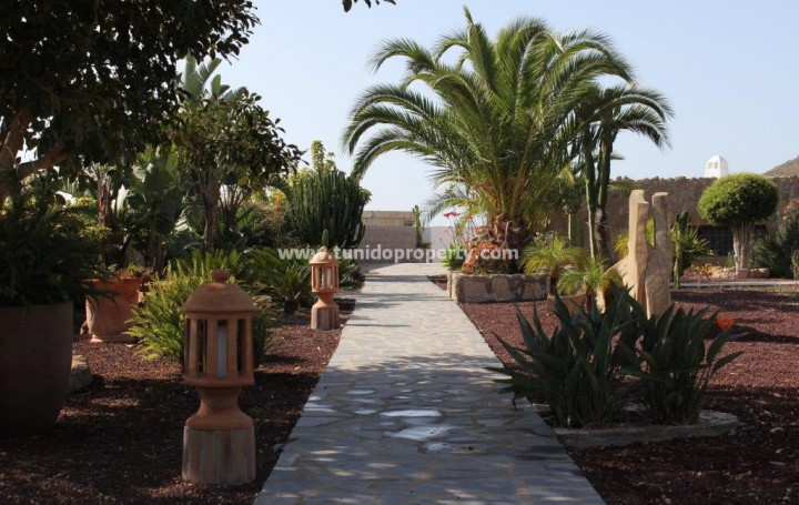 Finca in Tenerife, San Miguel for sale » #1355