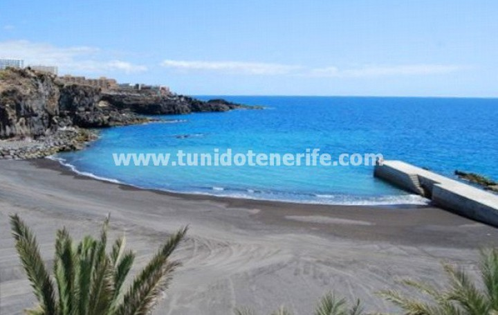 Duplex apartment in Tenerife, Callao Salvaje, for sale » #1830