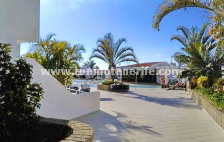 Apartamento estudio in Tenerife, San Eugenio Alto, for sale » #1831